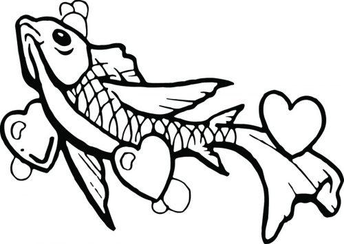 FISH-107