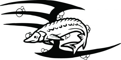 FISH-122