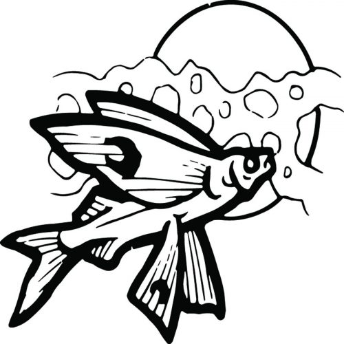 FISH-125