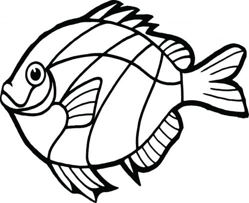 FISH-133