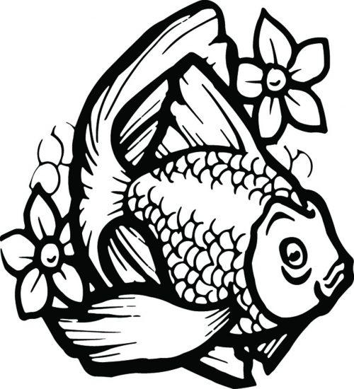 FISH-134