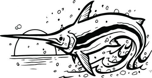 FISH-138