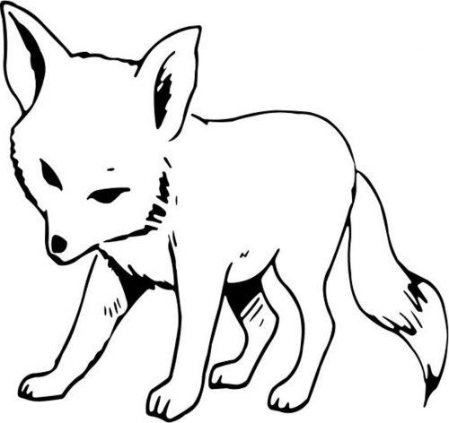 FOX-001
