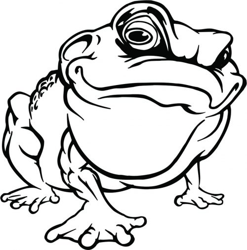 FROG-019