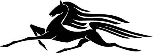 HORSE-RACING-013