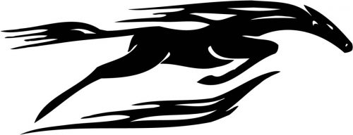 HORSE-RACING-043