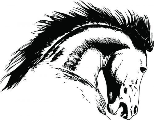 HORSE-110