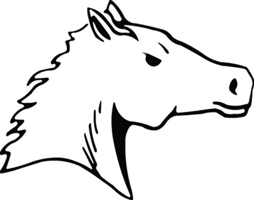 HORSE-119