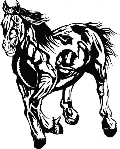 HORSE-128