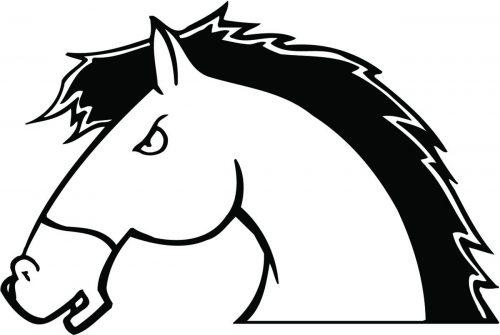 HORSE-137