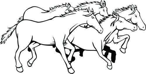 HORSE-139