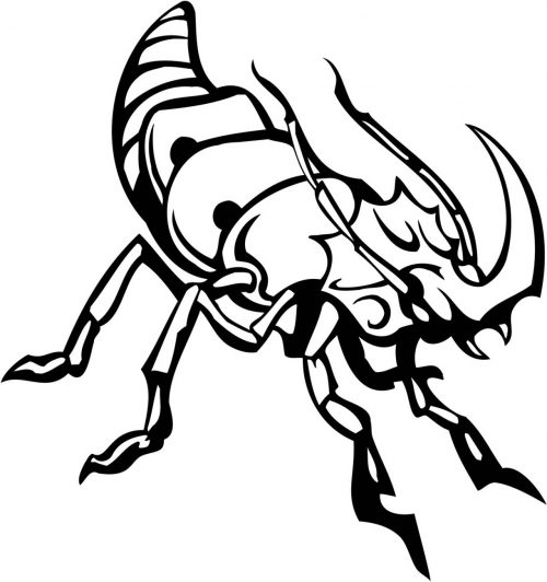 INSECT-116