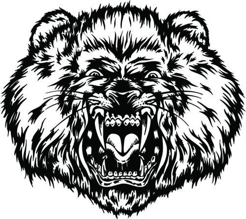 LION-076