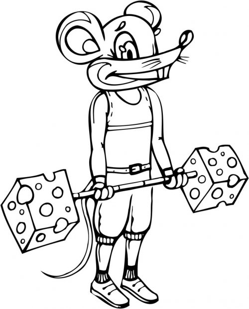 MOUSE-028