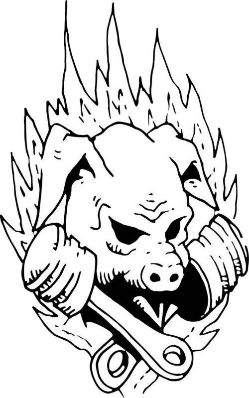PIG-002