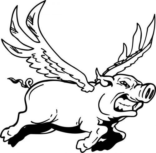 PIG-003