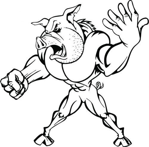 PIG-015