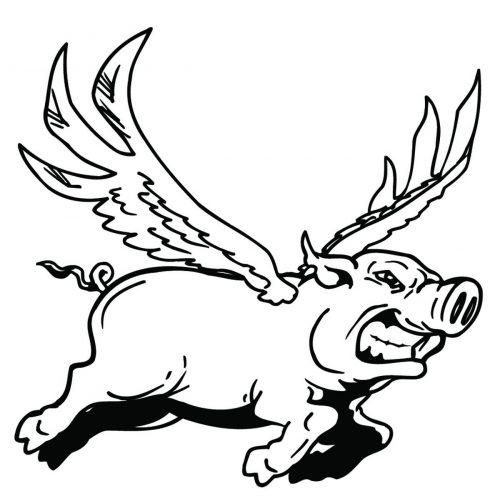 PIG-016