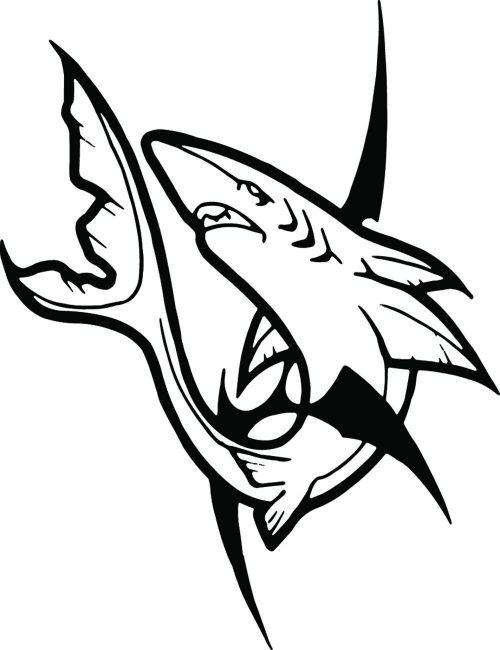 SHARK-060