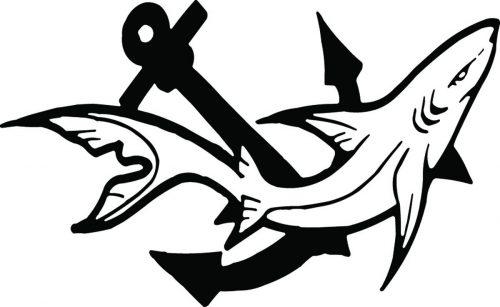 SHARK-067