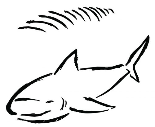 SHARK-088