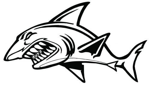 SHARK-089
