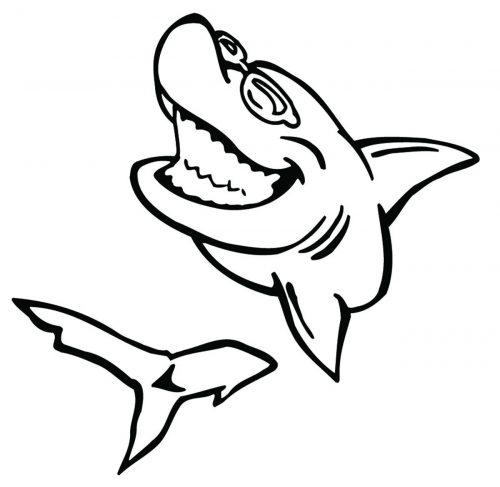 SHARK-092
