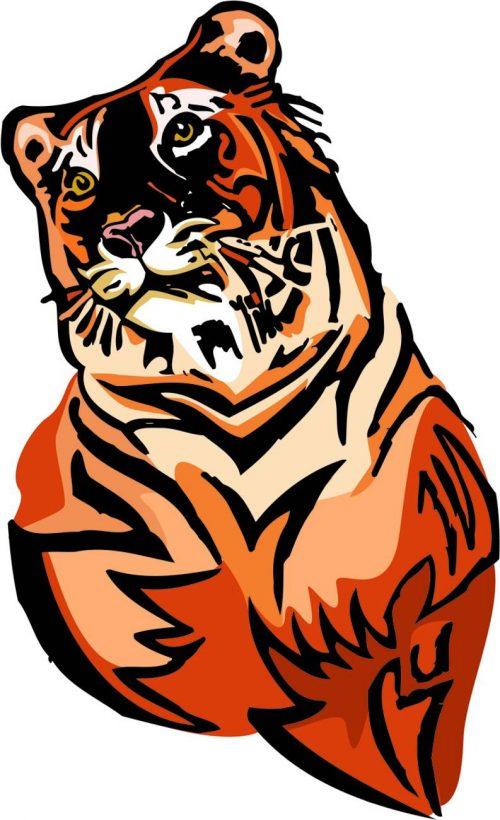 TIGER-032