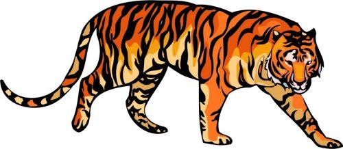 TIGER-033