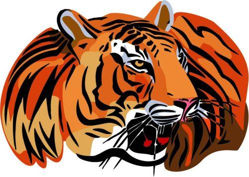 TIGER-034