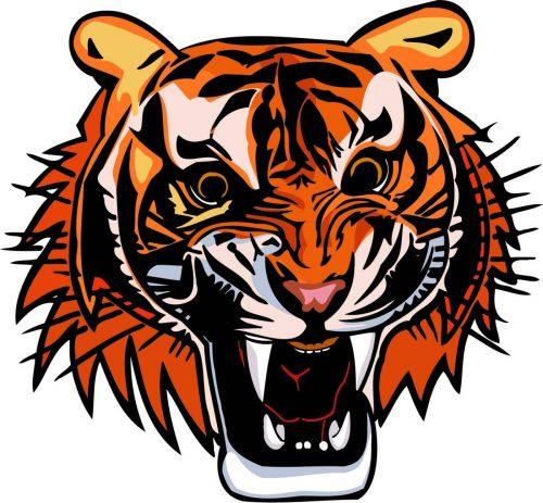 TIGER-035