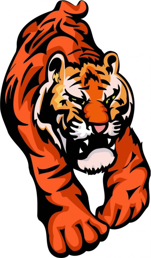 TIGER-036
