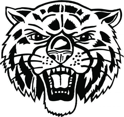 TIGER-037