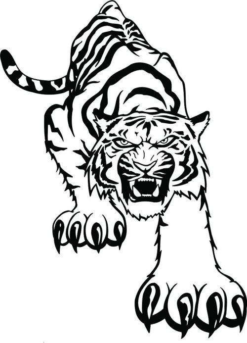 TIGER-041