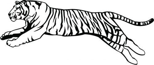TIGER-043