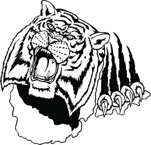 TIGER-046