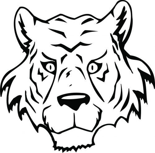 TIGER-054