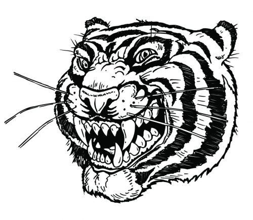 TIGER-055