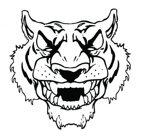 TIGER-062