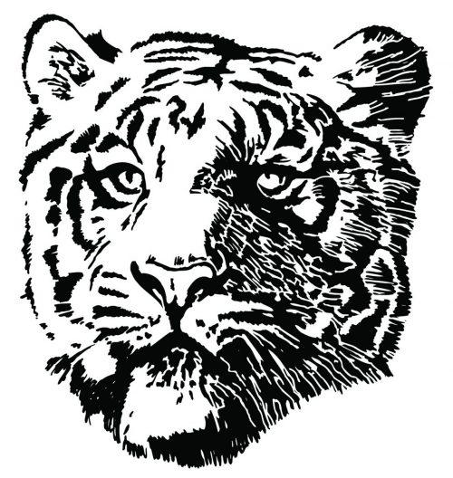 TIGER-066