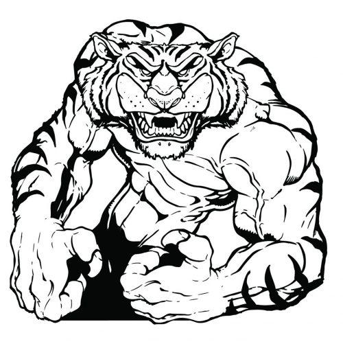 TIGER-075