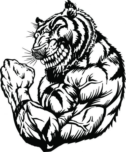 TIGER-076