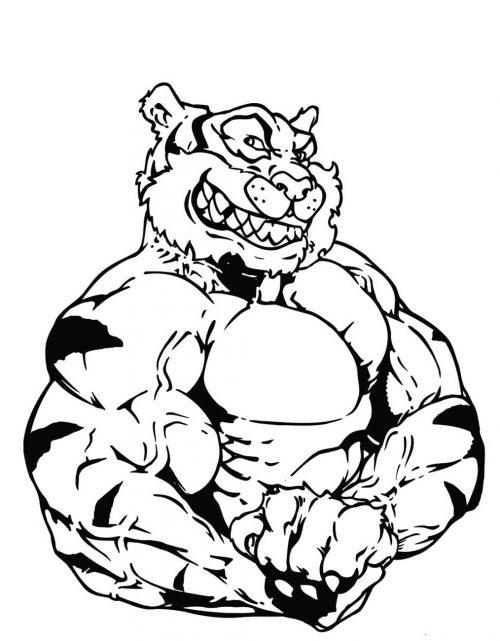 TIGER-078