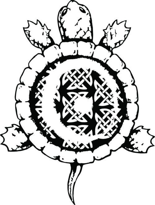 TURTLE-004