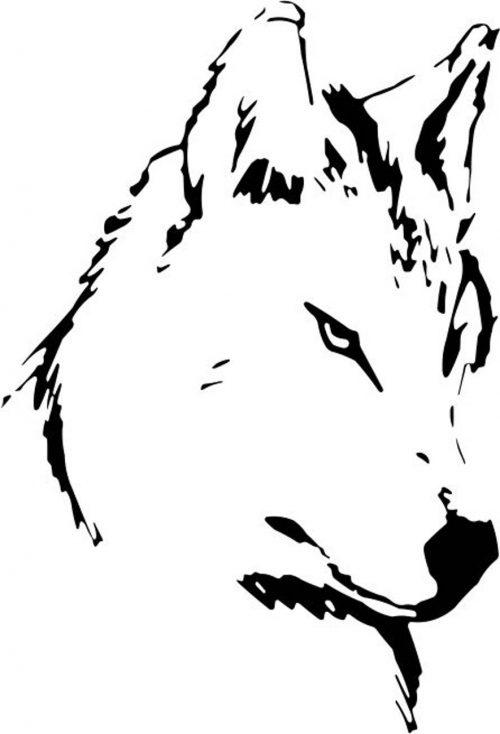 WOLF-005