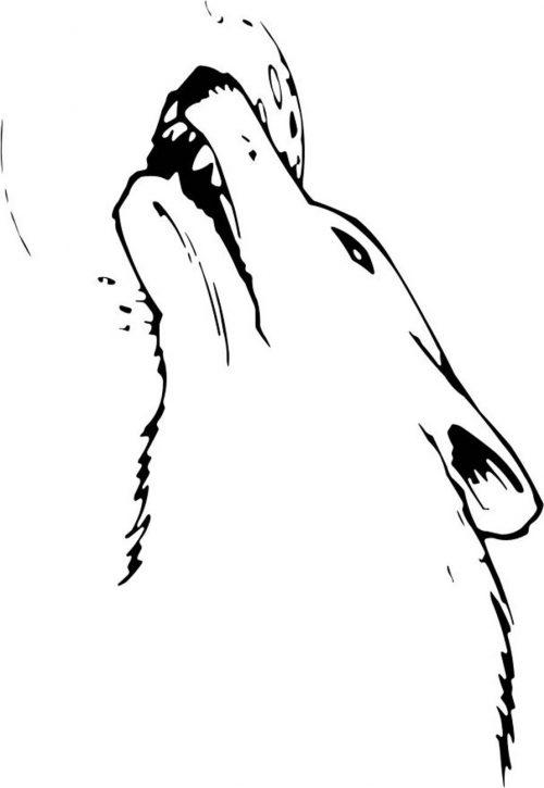 WOLF-009