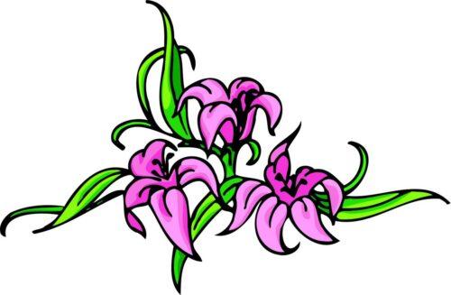 FLOWERS-COLOR-224