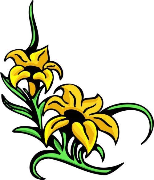 FLOWERS-COLOR-225