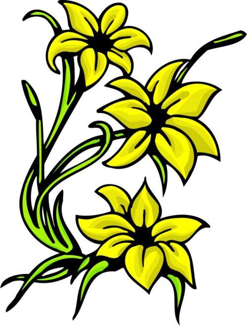 FLOWERS-COLOR-231