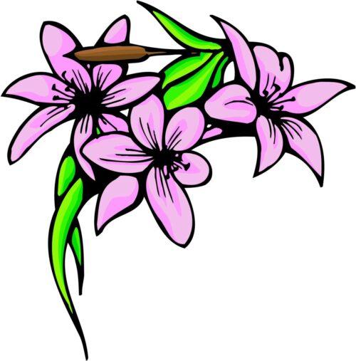 FLOWERS-COLOR-240
